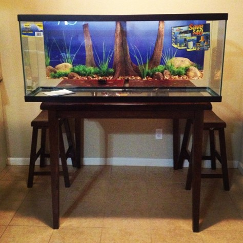 Download build fish tank stand 55 gallon plans diy triton for 55 gal fish tank stand