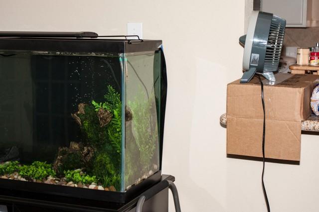 aquarium_cooling